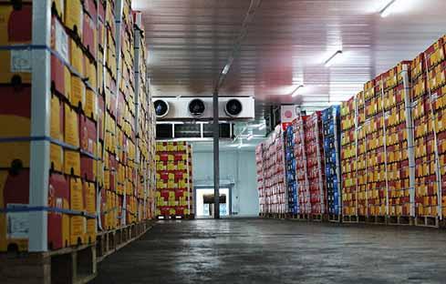 80 درصد میوه دپو شده در سردخانهها متعلق به دلالان است