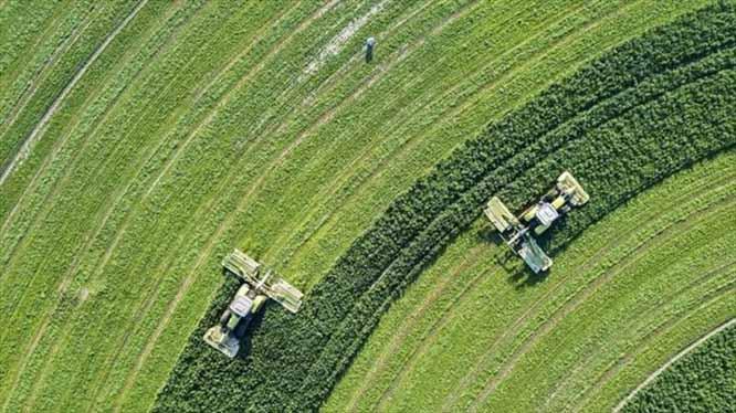 تجربه سرمایه گذاری در بخش کشاورزی از چین تا آمریکا