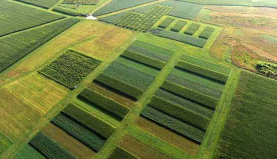 تعیین الگوی کشت بهینه محصولات کشاورزی در دشتهای استان مرکزی