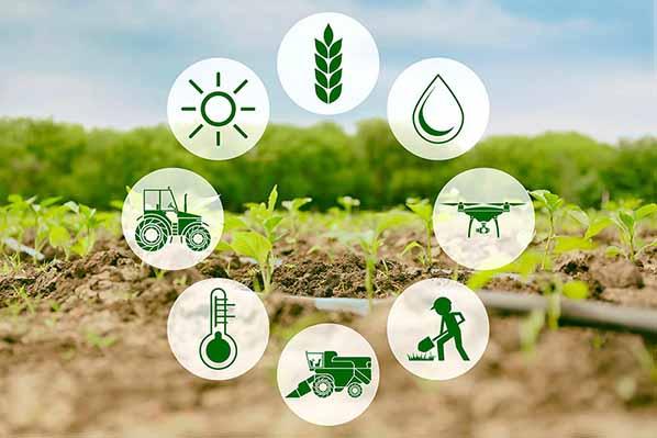 توصيه های هواشناسی کشاورزی از تاريخ 22 لغايت 26 اردیبهشت 1400