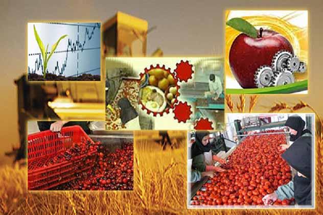 زنجان، استان برتر در فرآوری محصولات کشاورزی