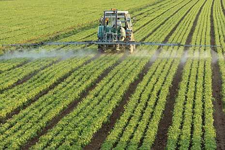 اولویت های بخش کشاورزی در دولت آینده