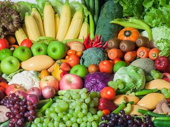 محصولات کشاورزی بیش از ١٧ درصد ارزش صادرات را به خود اختصاص دادند