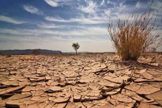 چشم کشاورزان خراسانشمالی به مناسبسازی راههای بین مزارع خشک شد