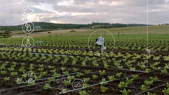 توصيه های هواشناسی کشاورزی از تاريخ 10 لغايت 14 شهریور 1400