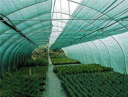سایهبان؛ کاربردیترین روش کاهش مخاطرات در بخش کشاورزی