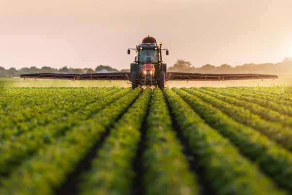 6 اقدام ضروری برای توسعه تجارت الکترونیک محصولات کشاورزی