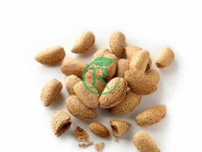 بادام سرا – شرکت تولیدی و بازرگانی ماهان مهر داریس