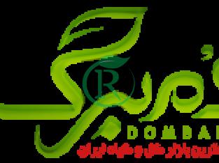 دمبرگ – جامع ترین بازار گل و گیاه ایران