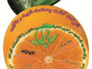 شرکت کشت و صنعت شهید رجایی دزفول