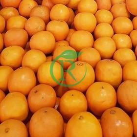 فروشگاه اینترنتی میوه سبزالو