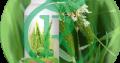 مجتمع شیمیایی بیستون کرمانشاه ( مشبک )