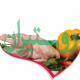 توکاسان خاور