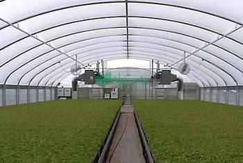 سیستم گرمایش گلخانه میوتا