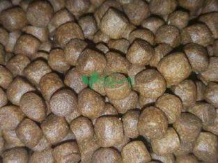 خوراک آبزیان شرکت صیادان جوان جاسک