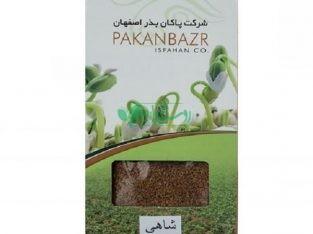 پاکان بذر اصفهان